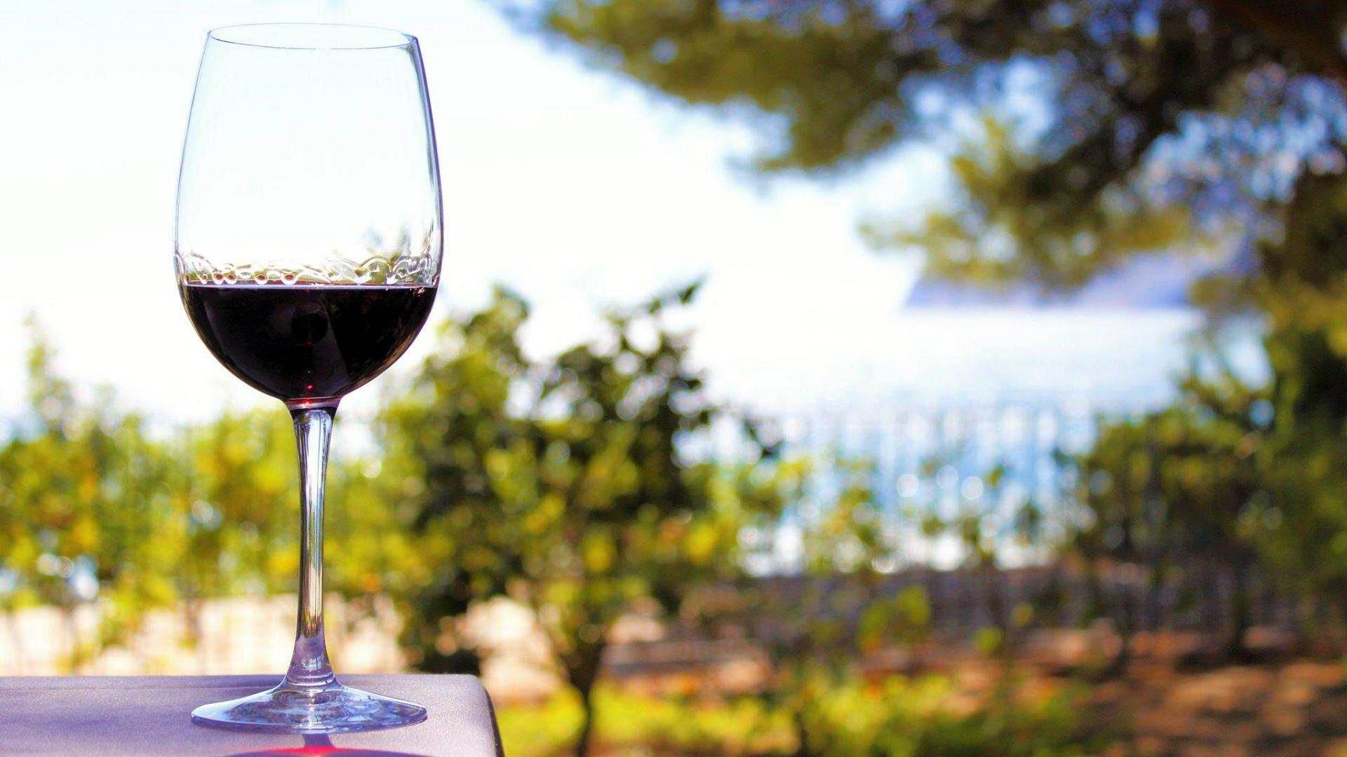 Lähde maistelumatkalle – parhaat viinitilat Espanjassa